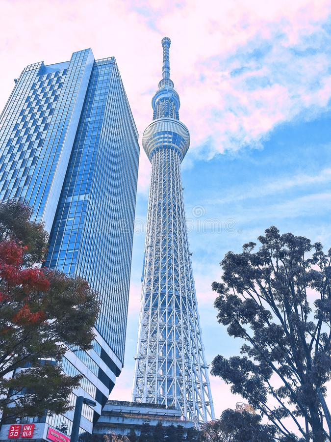 Aleatoriamente Tóquio do que eu ver fotos de stock royalty free