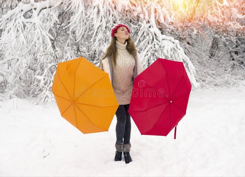 Alegría de caminar en el invierno imagen de archivo libre de regalías