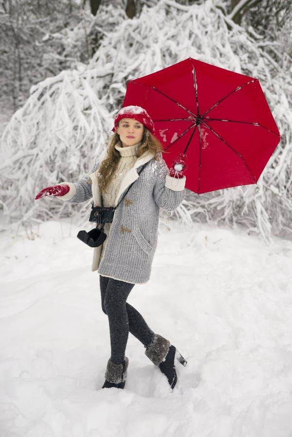 Alegría de caminar en el invierno imagenes de archivo