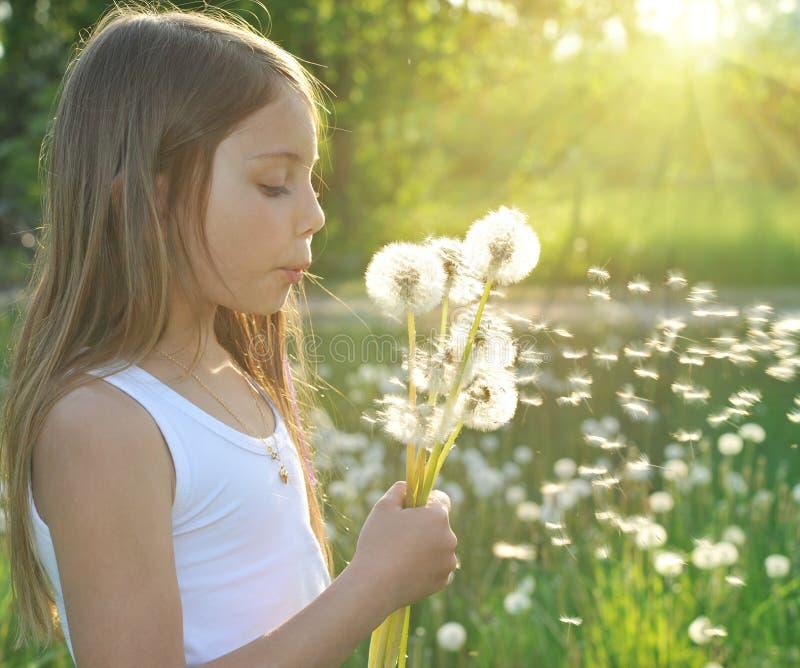 Alegría del verano foto de archivo libre de regalías