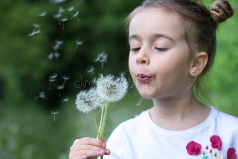 Alegr?a del verano - diente de le?n que sopla de la muchacha preciosa, concepto feliz del ni?o fotos de archivo libres de regalías