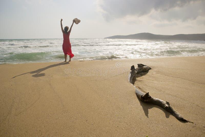 Alegre na praia fotos de stock