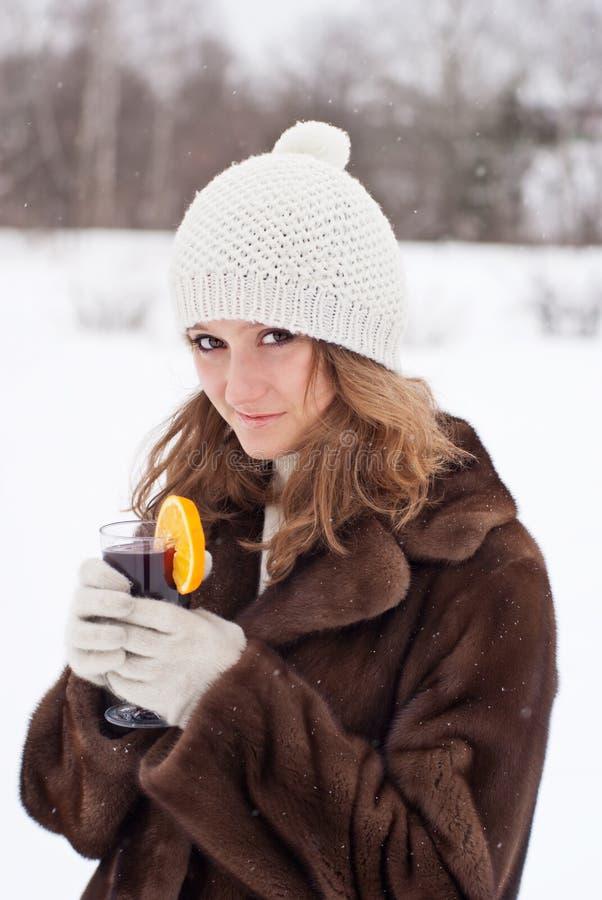 Alegria do inverno. imagens de stock royalty free