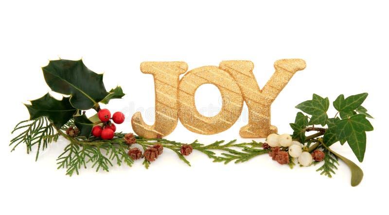 Alegria Do Natal Fotografia de Stock Royalty Free