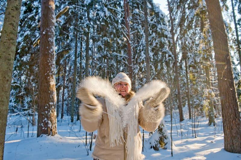 Alegria dos invernos imagem de stock