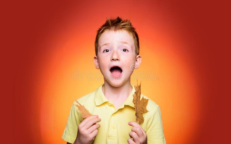 Alegrias da infância Menino ruivo que joga com folhas e que olha a câmera Conceito do estilo de vida da infância da família imagem de stock royalty free
