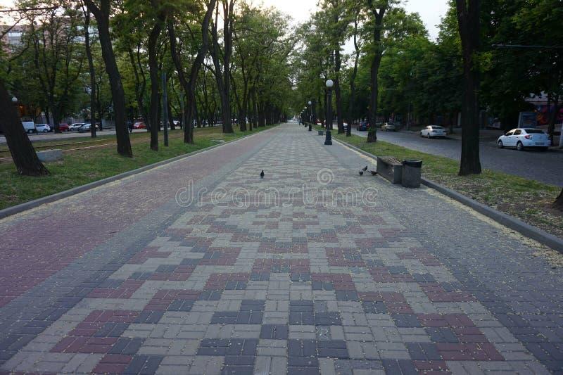 Aleia abandonada ao longo da avenida, com a estrada pavimentada da pedra fotografia de stock royalty free