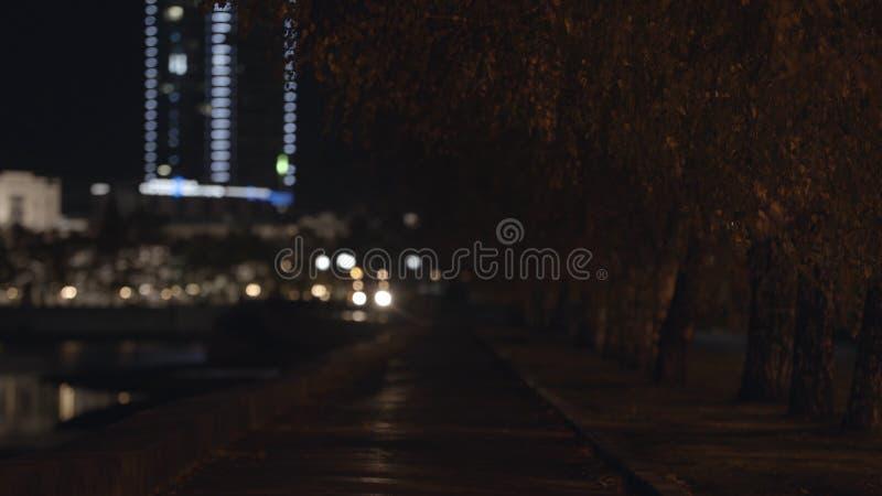 Aleia da cidade da noite com lanternas e árvores no outono Trajeto vazio com a aleia dos vidoeiros no fundo de faróis de incandes fotografia de stock royalty free