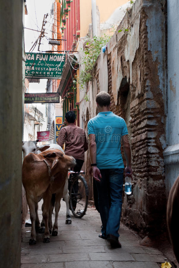 Aleia em Varanasi fotografia de stock