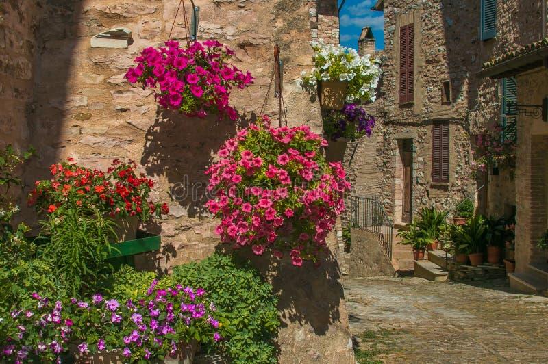 Aleia típica da vila mediterrânea em Itália imagem de stock royalty free