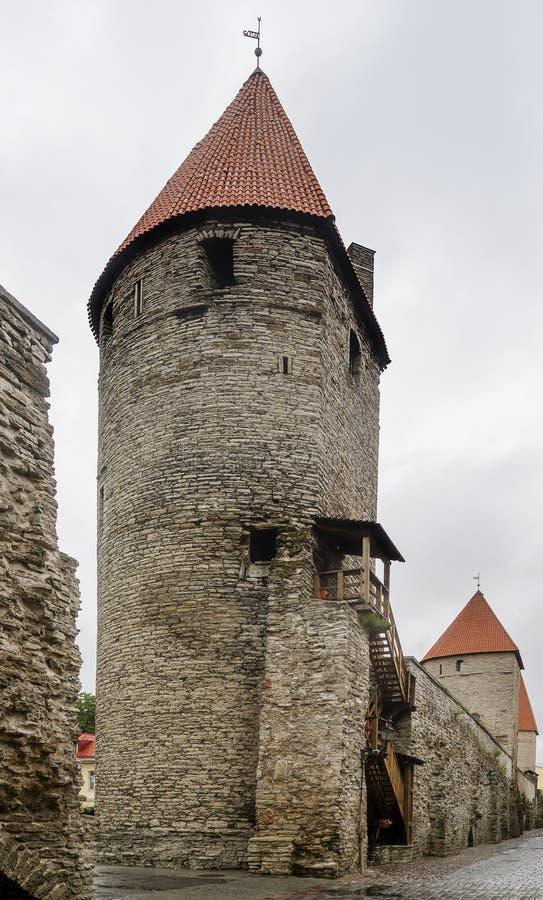 Aleia típica dentro das paredes medievais antigas da cidade velha de Tallinn, Estônia, com suas torres defensivas fotos de stock royalty free
