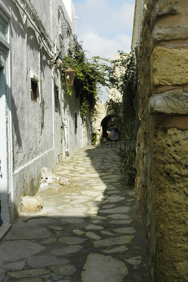 Aleia tunisina em Hammamet imagem de stock
