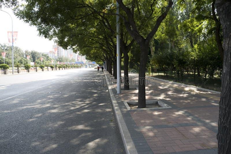 aleja Beijing s fotografia stock