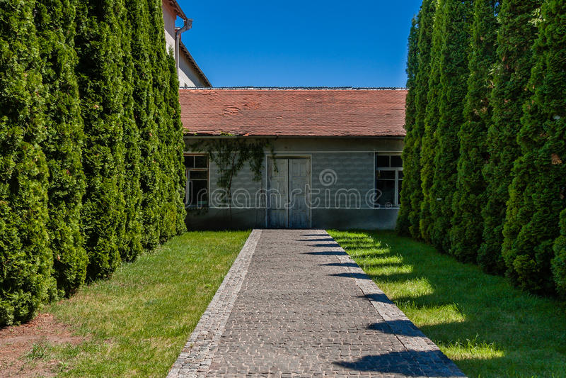 Aleja drzewa prowadzi dom z starymi drzwiami zdjęcie royalty free