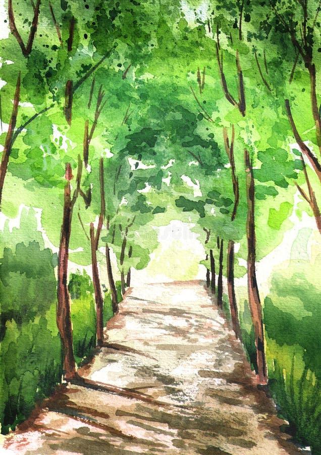 Aleja zieleni drzewa, iluminująca słońcem z światłem, przy końcówką tunel Akwareli ręka rysująca pionowo ilustracja ilustracja wektor