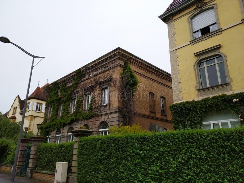 Aleje Colmar, Alsace, Francja obrazy royalty free