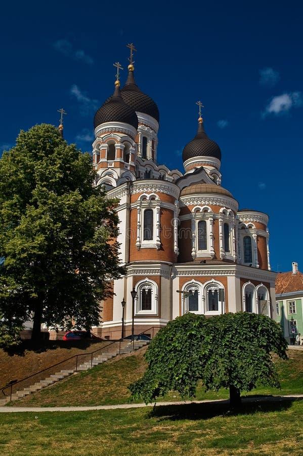 aleksander大教堂nevsky tallin 库存照片
