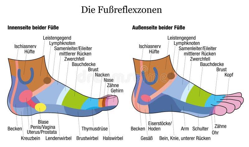 Alemán de la opinión del tobillo del perfil del lado del Reflexology del pie ilustración del vector