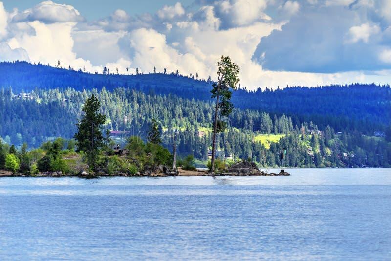 ` Alene Idaho de Coeur d del lago peninsula del árbol imagen de archivo libre de regalías