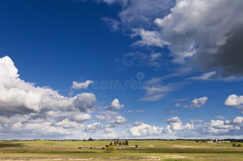 Alentejo krajobraz obrazy royalty free