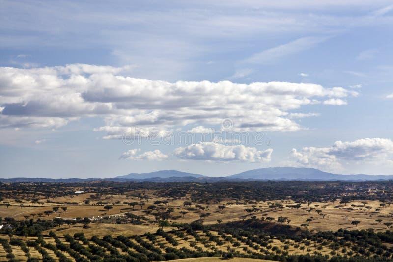 Alentejo landskap royaltyfri foto