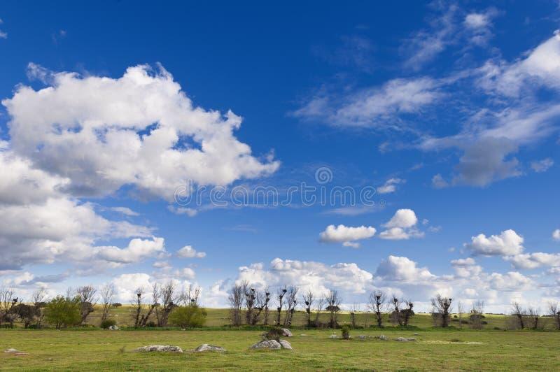 Alentejo landskap arkivfoton