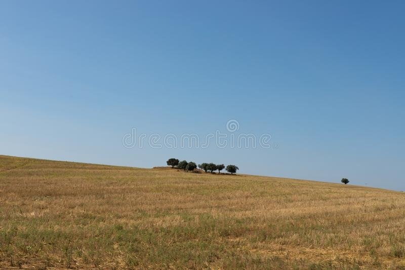 Dry and warm landscape. Alentejo the most dry and warm part of Portugal although it is one of the most produtive royalty free stock image