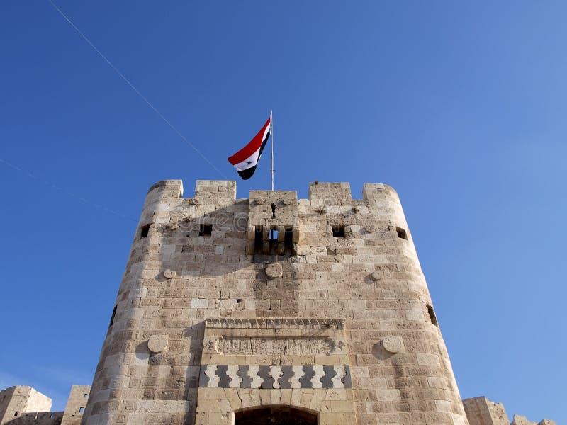 Aleppo citadel i syria royaltyfria bilder