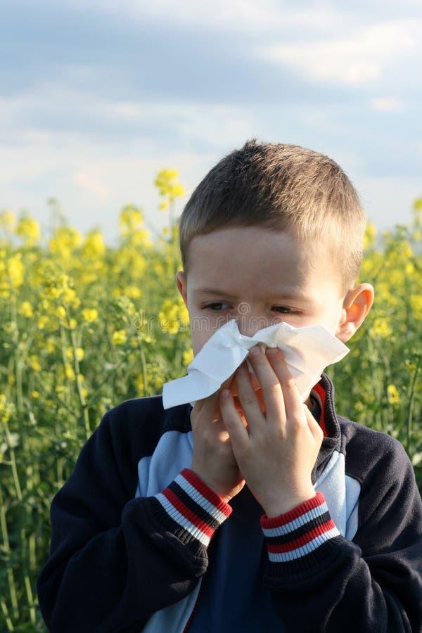 Alergia imagem de stock