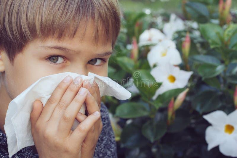 alergia Dzieciak dmucha jego nosów pobliskich kwitnie kwiaty zdjęcie royalty free