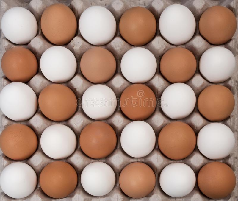 Alernative white and brown eggs stock photography