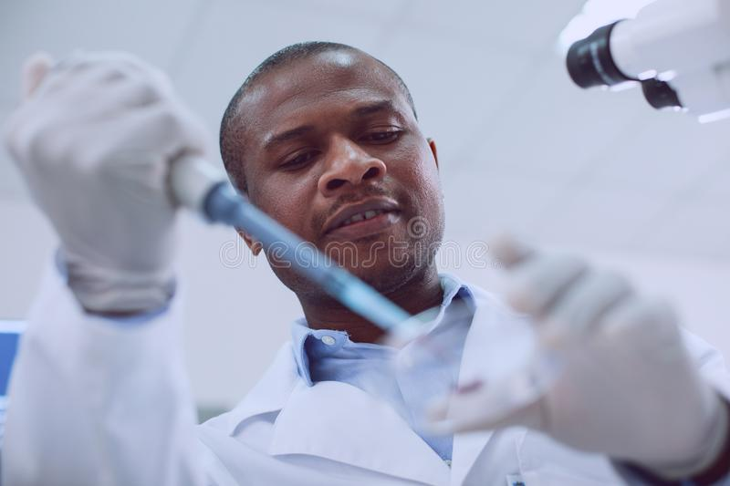 Alert afro-american researcher doing a blood test. Being a biologist. Inspired skilled scientist conducting a blood test and wearing a uniform royalty free stock photo