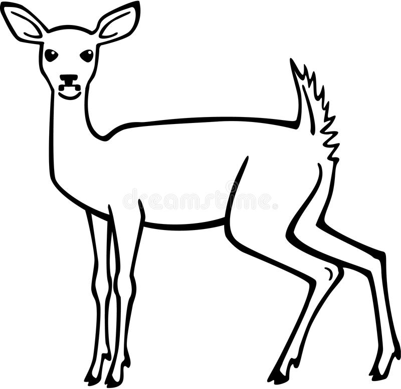 Line Art Deer : Alert doe stock vector illustration of female flag