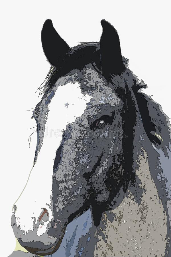 Alerta Grey Mare Head - pintura ilustração royalty free