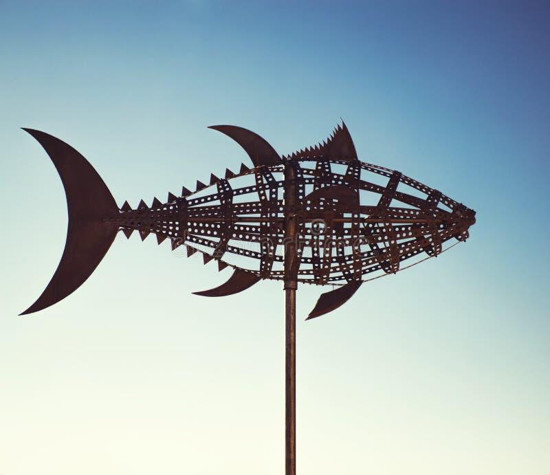 Aleta de vento do atum fotografia de stock