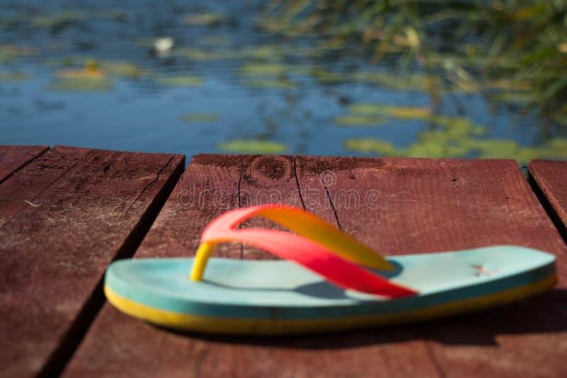 aleta del turquise que pone en tablón de madera marrón contra el cielo azul y agua y bosque y cañas verdes imagen de archivo