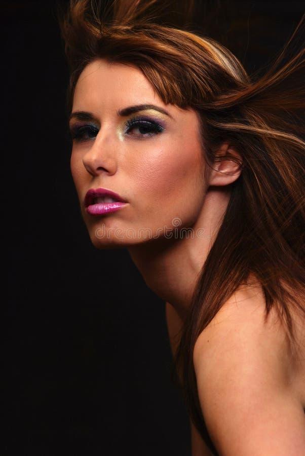 Aleta do cabelo foto de stock
