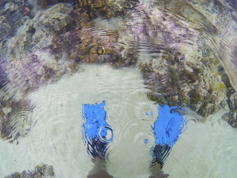 Aletas azuis e recife de corais subaquáticos, foto da vista superior Posição do mergulhador na água do mar Mergulhando ou mergulh imagens de stock