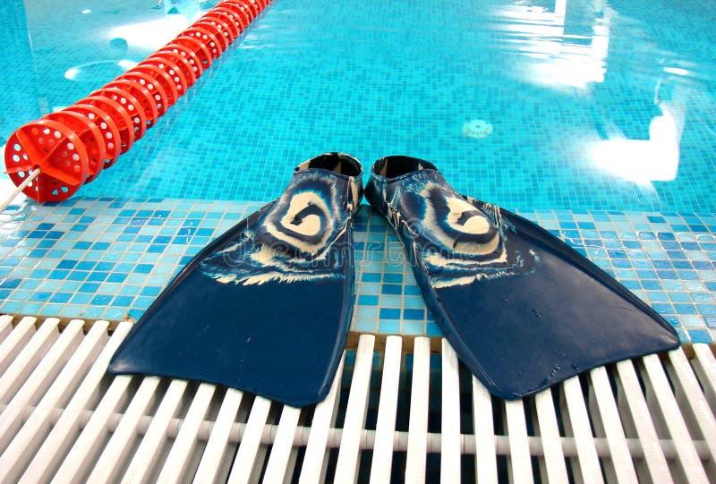Aletas con la trayectoria de la natación imagenes de archivo