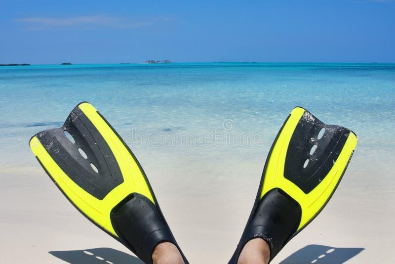 Aletas del equipo de submarinismo en la playa