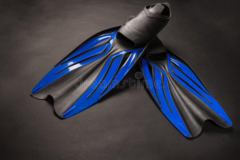 Aletas pretas e azuis de borracha fotografia de stock royalty free