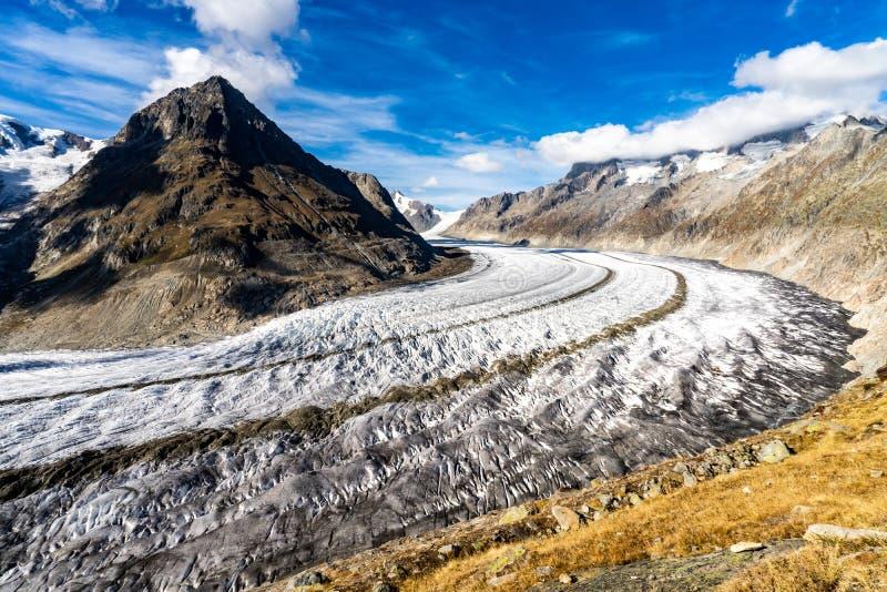 Aletsch glaciär i fjällängarna i Schweiz royaltyfri fotografi