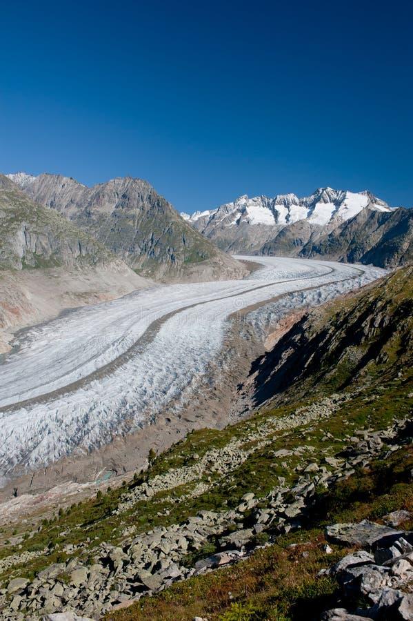 Aletsch Glacier. And the summits of Fiescher Gabelhorn, Schönbühlhorn, Wannenhorn in Valais, Switzerland, on a bright morning royalty free stock image