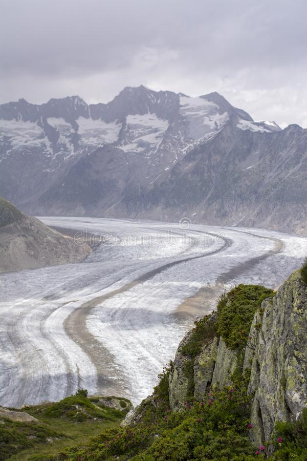 Aletsch glacier. Glaciers are melting at an alarming rate as seen in Aletsch glacier, Valais, Switzerland stock images