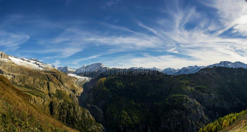 Aletsch Glacier Panorama royalty free stock photo