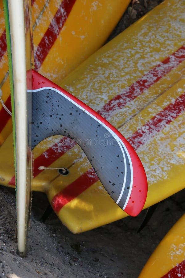 Alette di Longboard con il fondo dei surf immagini stock