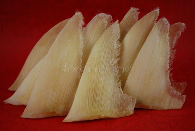 Alette secche dello squalo nel negozio del cinese tradizionale immagini stock libere da diritti