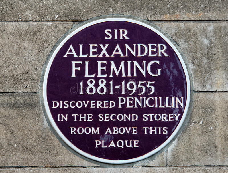 Alexander Fleming Plaque royalty free stock image
