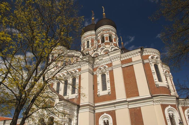Alexander Nevski Cathedral, Tallin. N, Estonia royalty free stock photography