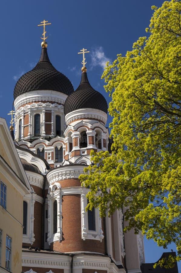 Alexander Nevski Cathedral, Tallin. N, Estonia stock photography